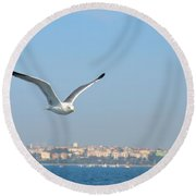 Seagull Soars In Breeze Round Beach Towel