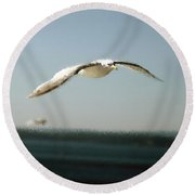 Seagull Solo Round Beach Towel