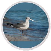 Seagull With Fish 1 Round Beach Towel