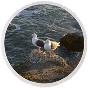 Seagulls Aka Pismo Poopers Round Beach Towel