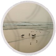 Seagulls And Sandpipers Round Beach Towel