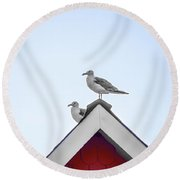 Seagulls Perched On The Rooftop Round Beach Towel