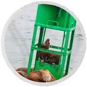 Seal Hammock Round Beach Towel