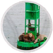 Seal Nap Time Round Beach Towel