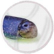 Seal On White Round Beach Towel