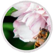 Searching Pink Flower Round Beach Towel