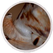 Seashell Abstract 1 Round Beach Towel