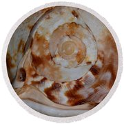 Seashell Abstract 5 Round Beach Towel