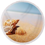 Seashell And Conch Round Beach Towel