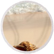 Seashell And Ocean Wave Round Beach Towel by Elena Elisseeva