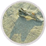 Seashell And Shadow On Sand Round Beach Towel