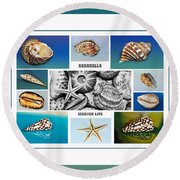 Seashell Collection 3 - Collage Round Beach Towel