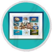 Seashell Collection 4 - Collage Round Beach Towel