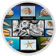 Seashell Collection Round Beach Towel by Kaye Menner