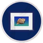 Seashell Wall Art 1 - Blue Frame Round Beach Towel