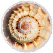Seashell Wall Art 11 - Spiral Of Harpa Ventricosa Round Beach Towel