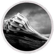 Seashell Without The Sea Round Beach Towel