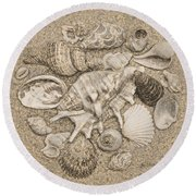 Seashells Collection Drawing Round Beach Towel