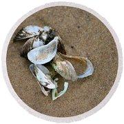 Seashells  Round Beach Towel