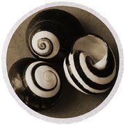 Seashells Spectacular No 27 Round Beach Towel by Ben and Raisa Gertsberg