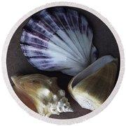 Seashells Spectacular No 30 Round Beach Towel