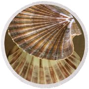 Seashells Spectacular No 54 Round Beach Towel
