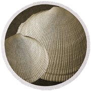 Seashells Spectacular No 8 Round Beach Towel by Ben and Raisa Gertsberg