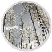 Silver Birch  Round Beach Towel