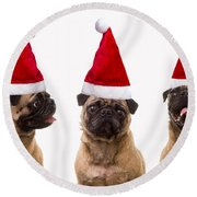 Seasons Greetings Christmas Caroling Pug Dogs Wearing Santa Claus Hats Round Beach Towel