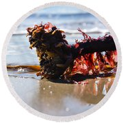 Seaweed 2 Round Beach Towel
