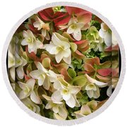 Seeing Double - Hydrangeas Round Beach Towel