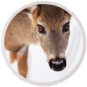 Seeing Into The Eyes Round Beach Towel