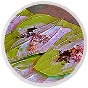 Selling Betel Nut For Chewing In Tachilek-burma Round Beach Towel
