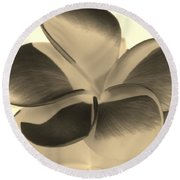 Sepia Bloom Negative Round Beach Towel