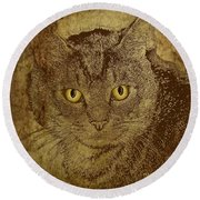 Sepia Cat Round Beach Towel
