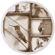 Sepia Hummingbird Collage Round Beach Towel