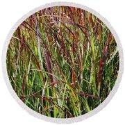 September Grasses By Jrr Round Beach Towel
