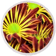 September's Radiance In A Flower Round Beach Towel