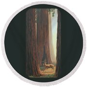 Sequoia Blacktail Deer Phone Case Round Beach Towel by Crista Forest
