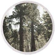 Sequoias Round Beach Towel