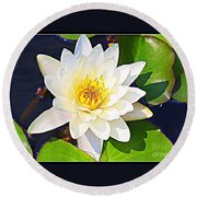Serenity In White - Water Lily Round Beach Towel