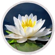 Serenity On The Lily Pond Round Beach Towel