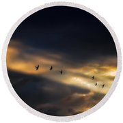 Seven Bird Vision Round Beach Towel
