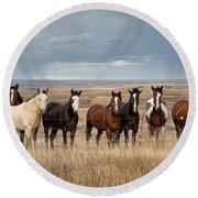 Seven Horses On The Range Round Beach Towel