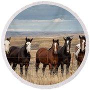Seven Horses On The Range Pan Round Beach Towel