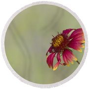 Shades Of Beauty Round Beach Towel