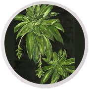 Shades Of Green Round Beach Towel
