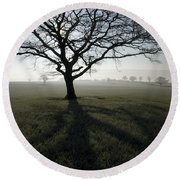 Shadow Tree Round Beach Towel
