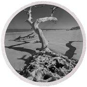 Shadows At Driftwood Beach Round Beach Towel