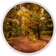 Shadows Of Forest Round Beach Towel